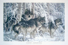 Larry Fanning Western Art Crystal Forest - Gray Wolves (Poster)