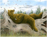 Robert Bissell Limited Edition Giclee on Paper AM2 - Small Works