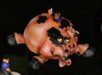 Todd Warner Sculpture Barnyard Series - Pig